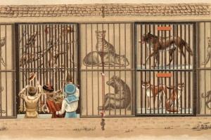 70/2106   [Prop-up]. De drie beren. Roodkapje. De Drie katjes. Met oom Jan