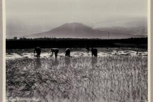 70/2325   [Photographs]. Kurkdjian, O. (1851-1903).