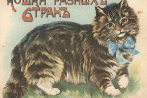 70/1934   [Russian children's books]. Koshki raznykh stran (Cats of variou