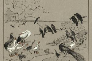 70/3730   Hoytema, Th. van (1863-1917).