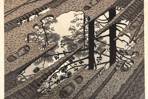75/3707   Escher, M.C. (1898-1972).